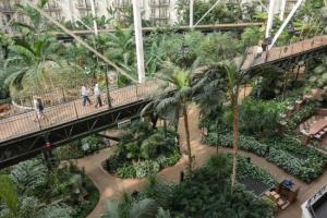 Gaylord Carden Conservatory Area