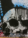 Skull Shirt Pictures 009