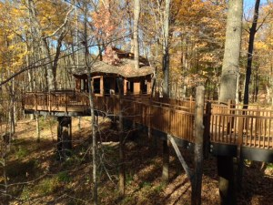 Mt Airy Treehouse
