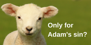 Only for Adam's Sin